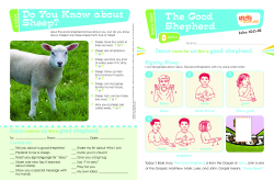 The Good Shepherd Grade 1-2