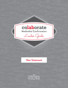 Colaborate: Methodist Confirmation / Leader Guide / New Testament